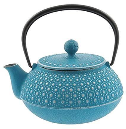10. Iwachu 480-880 Japanese Iron Tetsubin Teapot