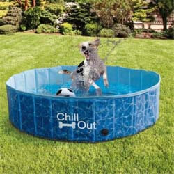 9. ALL FOR PAWS Outdoor Foldable Bathing Dog Pool Portable Pet Bath Tub Blue No Need Pump Up