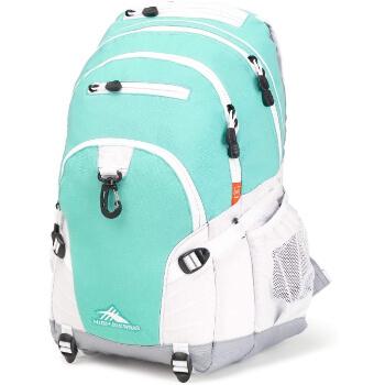 8. High Sierra Backpack